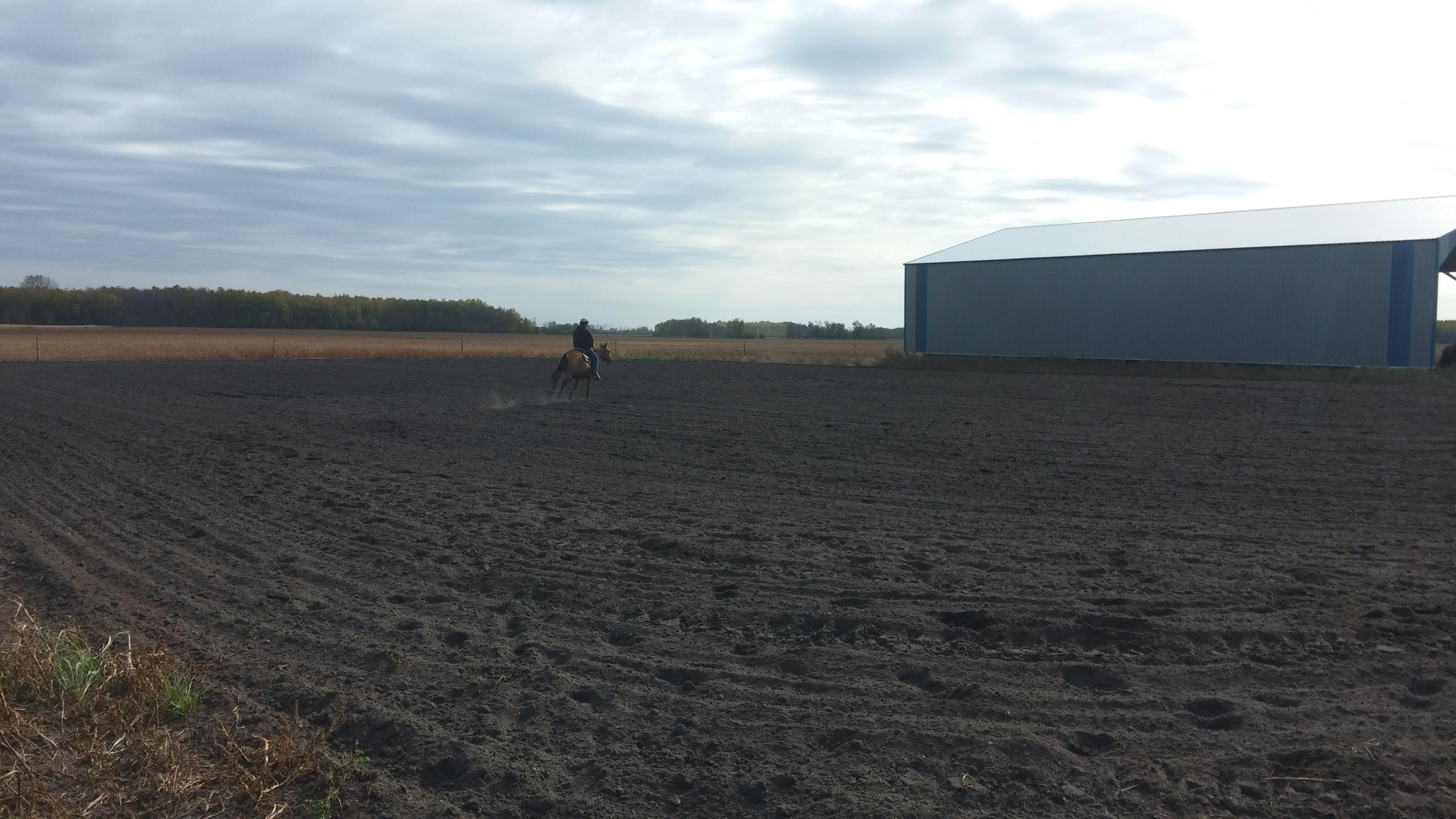 Future location of outdoor arena