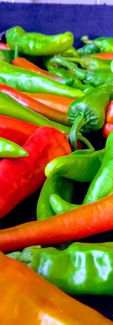 X-Hot (Lumbre) Hatch Green Chiles