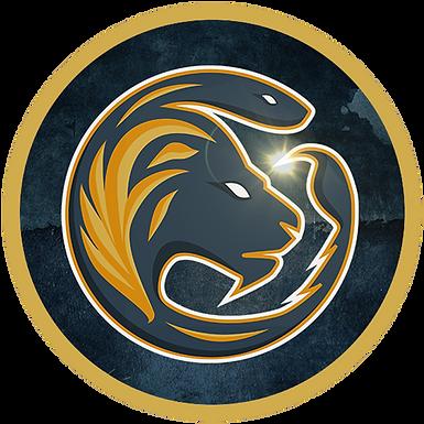 PRESS RELEASE: Pridestark Empire Acquires Team 011 Wild Rift Team!