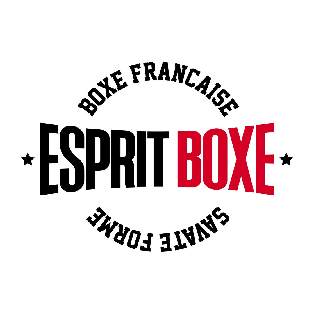 LOGO ESPRIT BOXE 2020.jpg