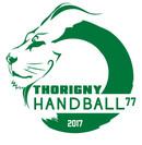 LOGO Thorigny Handball vert.jpg