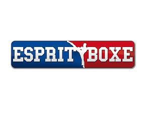 LOGO ESPRIT BOXE 10.jpg