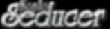 sonic_logo_chrom Kopie Kopie.png
