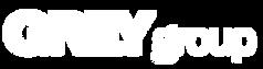 jorge c fernandez-mota ruiz, publicidad, grey group