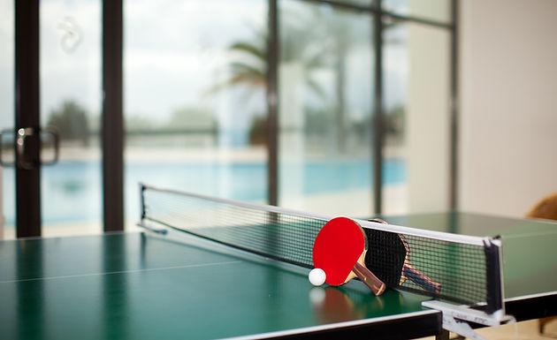 Ping Pong / Table Tennis