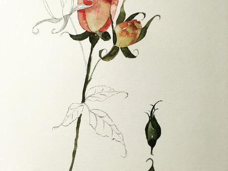 À Propos de Fleurs
