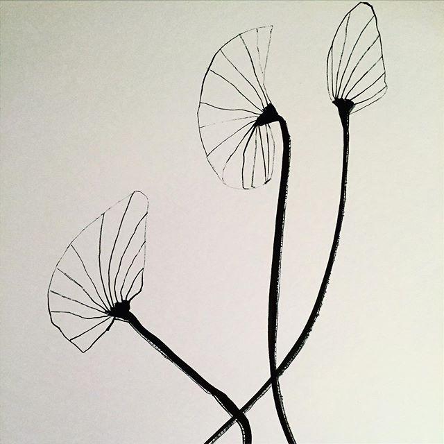 """ Simple flowers"" Paper.Sumi"