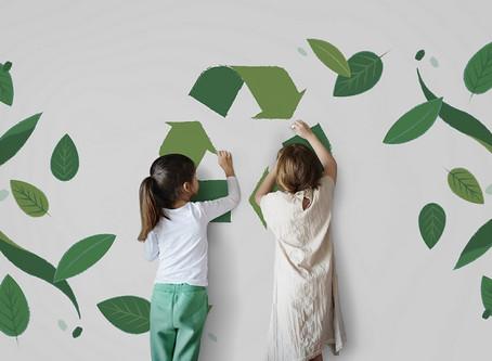 The Environmentally Friendly Classroom