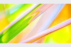 Colour Reed.jpg