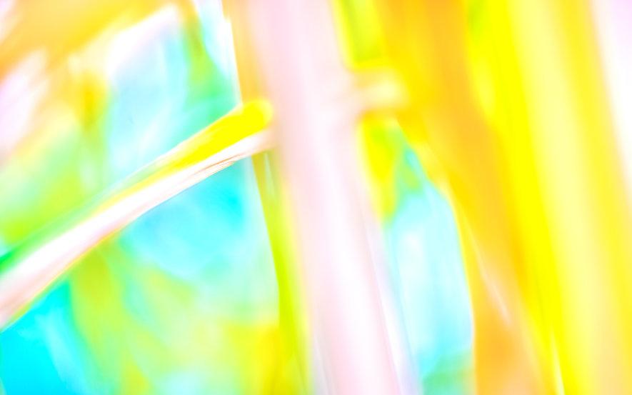 colour tree.jpg