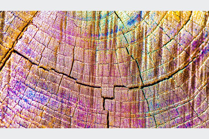 Colour Wood.jpg