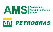 Petrobrás AMS