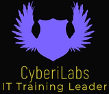 finalcyberLOGO.PNG