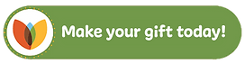 Make your gift today button (2).png
