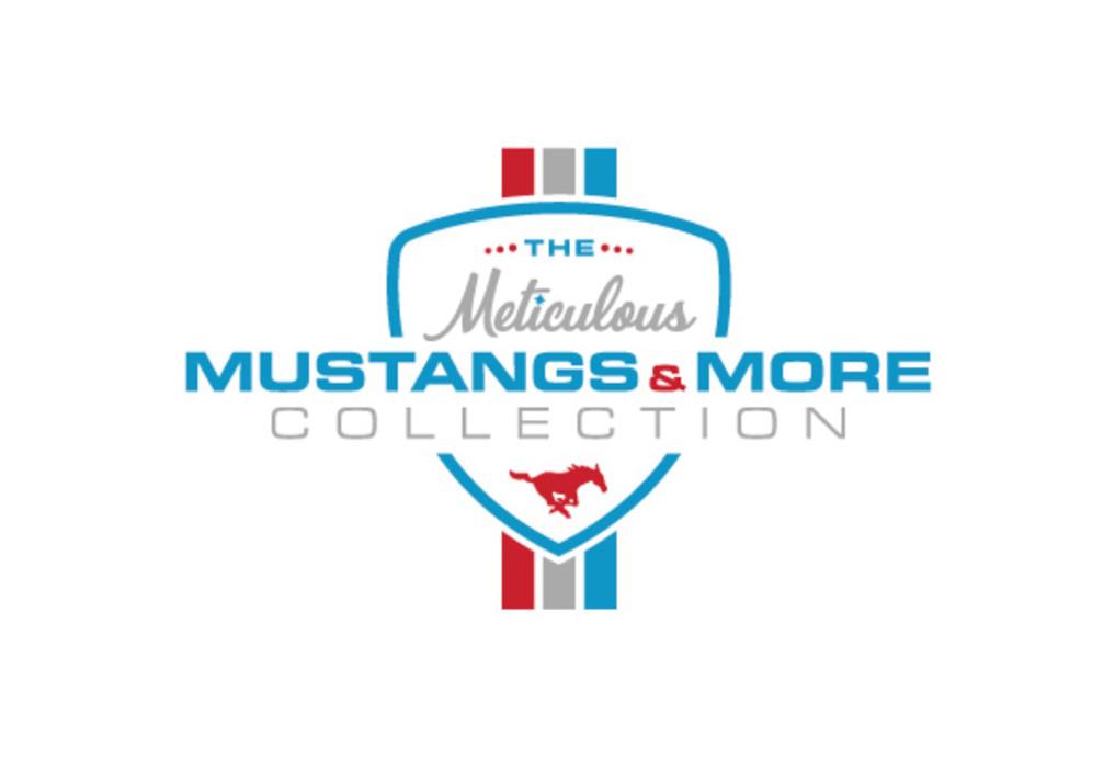 Meticulous-Mustang.jpg