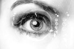 Biometrics Facial Recognition