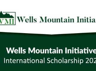 WMI Scholars Program 2020