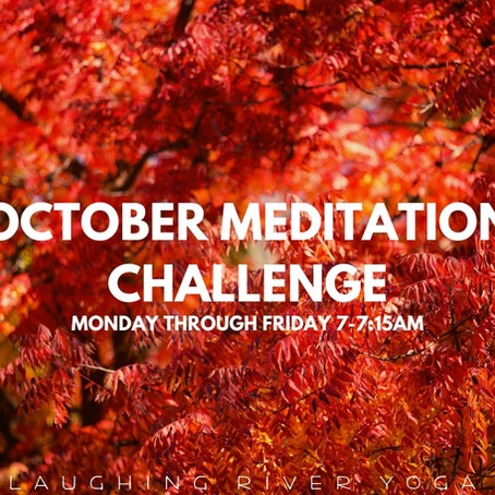 Meditation Challenge with Emily