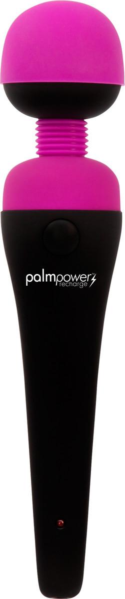 PalmPower Recharge Massage Wand