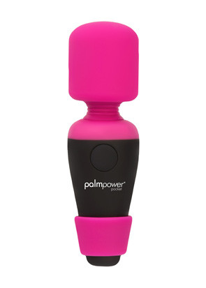 30828-for-palmpower-website.jpg