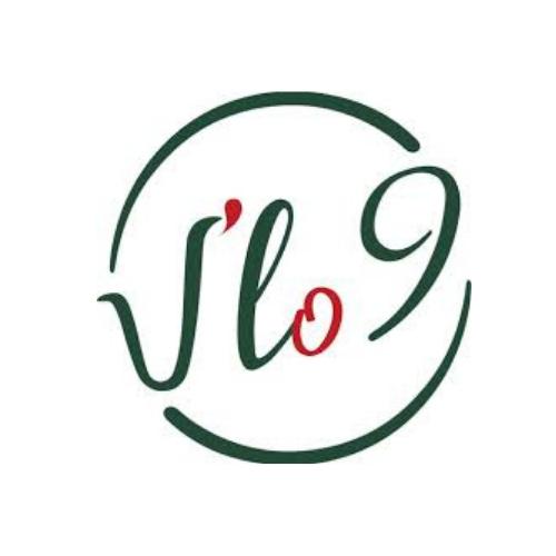 V'LO 9 Paris 5
