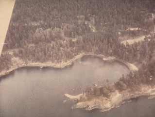 Aerial view of Thieves Bay. 1970.