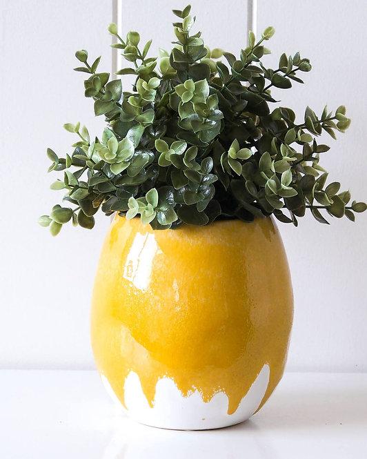 Dripping Mustard Pot planter