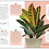 Thumbnail: My House Plant Changed My Life BOOK