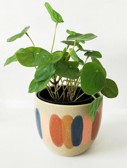 Strya Planter Retro Small 13cm
