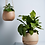 Thumbnail: Hanging Planter Small - White Garden to Table - Robert Gordon