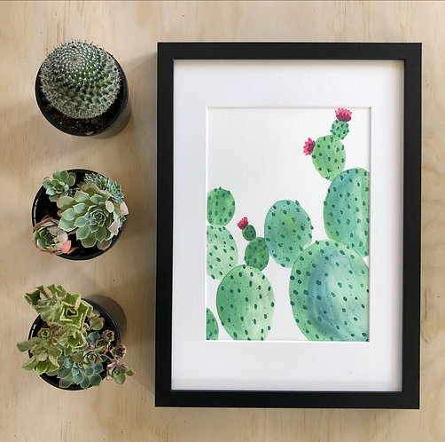 Prickly Beauty PRINT