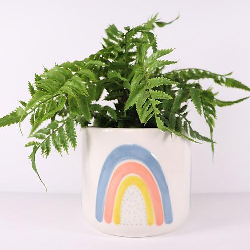 Ayla Rainbow Pot MED