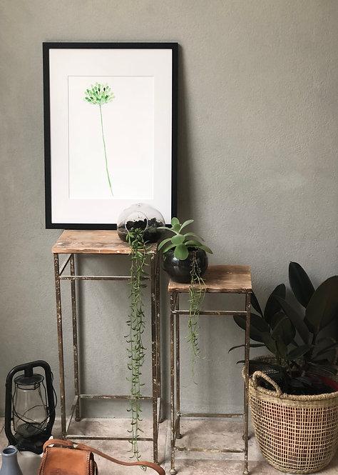 Green Single Bloom PRINT