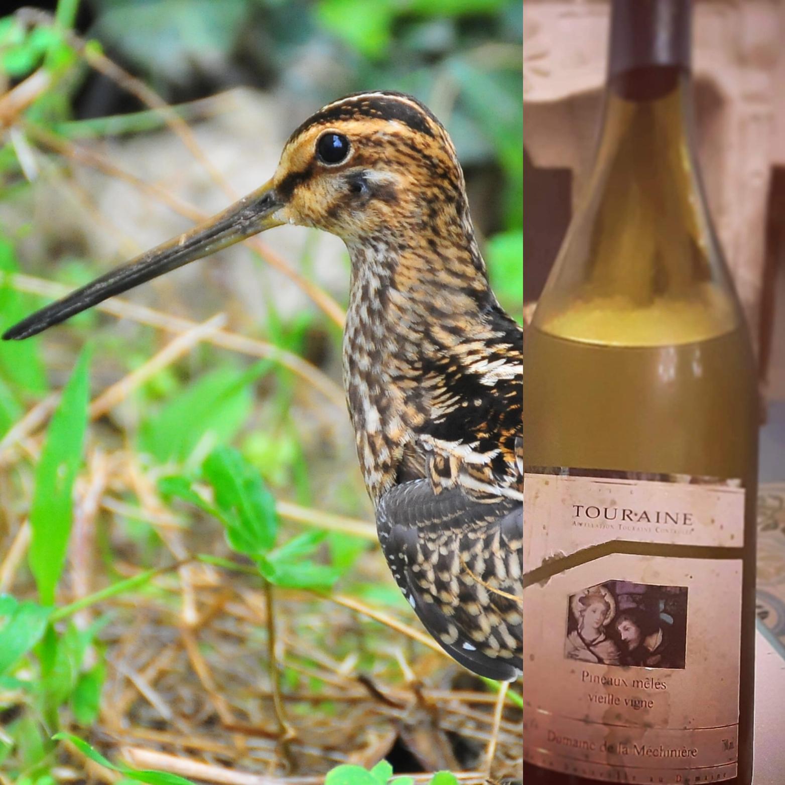 Vogels en Wijn?