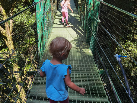 Auf zu den Hängebrücken in Monteverde (oder so...)