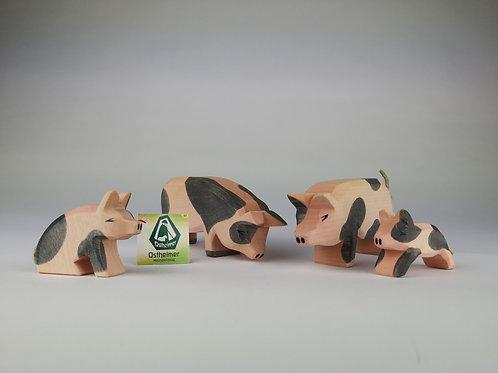 Schweine-Familie