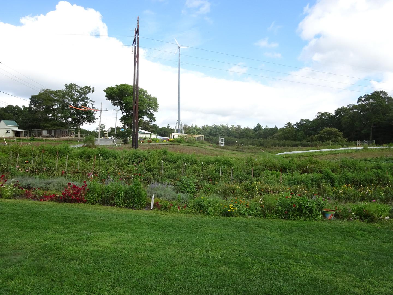 A Farm View
