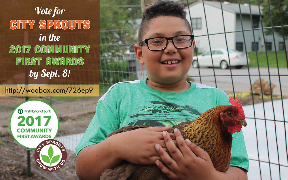Click the picture to vote for City Sprouts.
