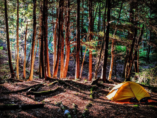 How to Choose a Tent for Backpacking