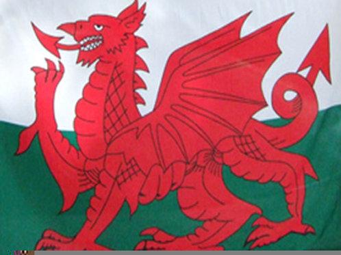 Baner Draig Goch 9' x 6' Welsh Dragon Flag