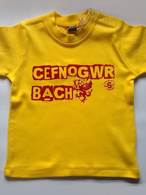 Crys-T Cefnogwr Bach/Little Supporter T
