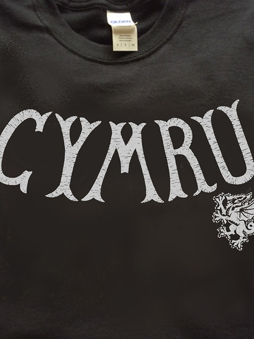 T CYMRU bathodyn/Badge T