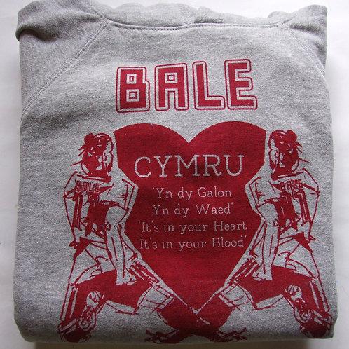 Bale Cymru Kids Hoodie