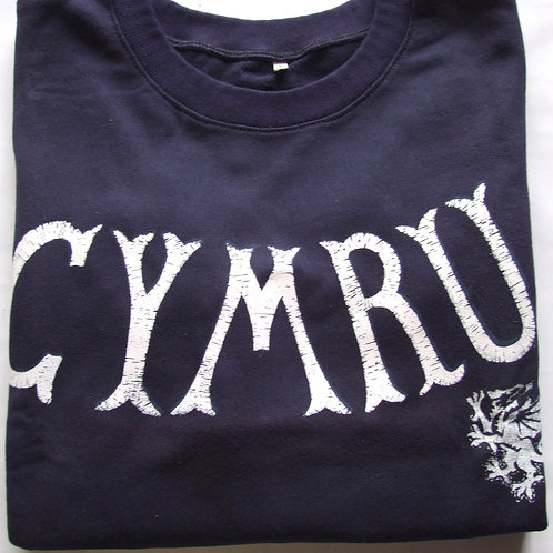 Wales sweatshirt (children)