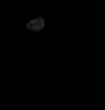 BG-logo - Black - petals.png