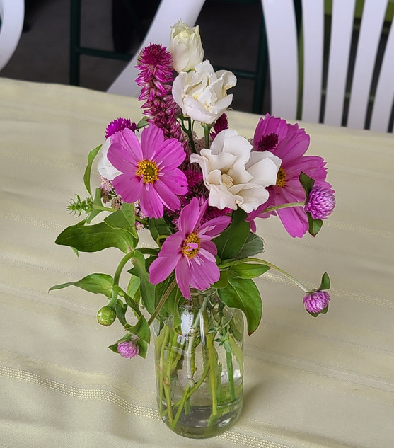 Pink Cosmos and Celosia