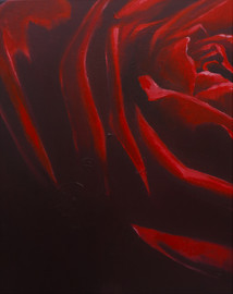 Red Roses – Part 1 (diptych)