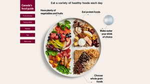 Image of Canada's 2019 updated food guide suggesting consumers eat a variety of healthy foods each day.