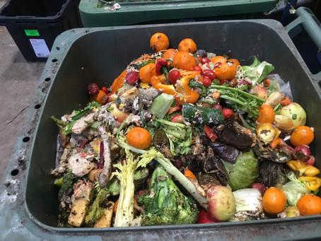 Trash Talk: Post 1 - Understanding household food waste