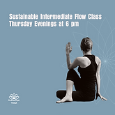 Sustainable Intermediate Flow Class.png